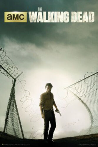 Walking Dead Andrew Lincoln Rick Grimes Prison Fence Poster Print, 24x36