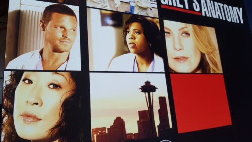 Everything Changes 2009 ABC TV Promotional Poster 27X40 VG Grey/'s Anatomy