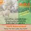 "thumbnail 4 - 6"" inch EXTRA THICK BULLY STICKS natural dog chews treats USDA & FDA approved"