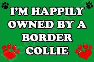 I-039-m-Happily-controllata-da-a-Border-Collie-GRANDE-calamita-da-frigo-regalo