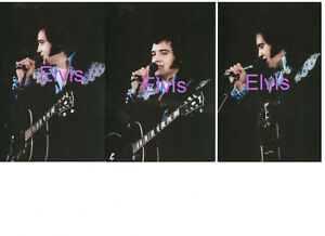 ELVIS-PRESLEY-BLUE-GOLD-ORANMENTS-LAKELAND-FL-4-27-75-SET-OF-3-PHOTOS-LOT-CANDID