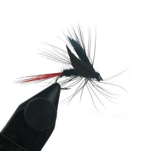 40Pcs Trout Fly Fishing Flies Dry Lure Lures Fish Baits Hooks with Fly Box H