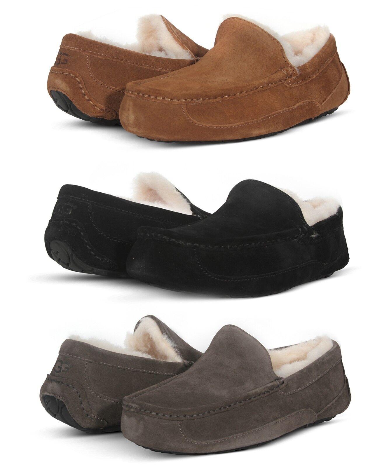 UGG Bottes Ascot, chaussons pour hommes, chaussures à enfiler en daim 1101110 noir châtaigne gris