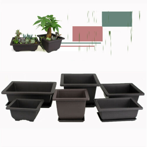 Garden Planter Nursery Square Flower Pot Bonsai Plant Bowl Succulent Basin