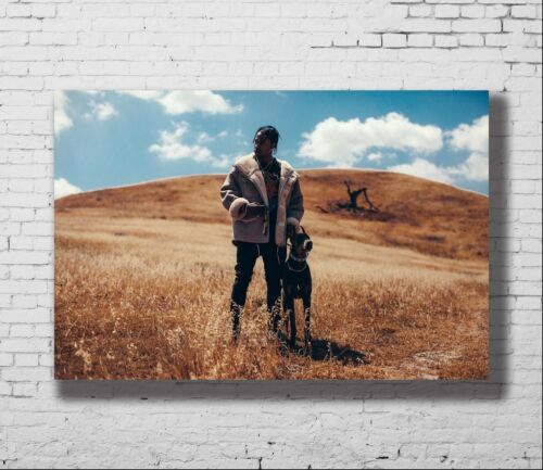 P-225 Art Travis Scott 21 24x36in American Hip Hop Music Star Canvas Poster