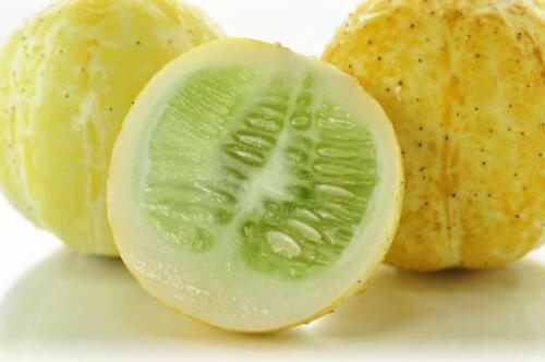 Lemon Cucumber Seeds Sweet and Fun to Grow Tender