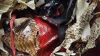 Exotic Leather - Genuine Python Skin Remnants, Assorted Leather Scraps