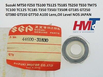 Yamaha LS2 R3 R5 YG5 YL1 YL2 YR1 YR2 R3 DT1 RT3 Gauge Oil Level 137-21761-00 NOS