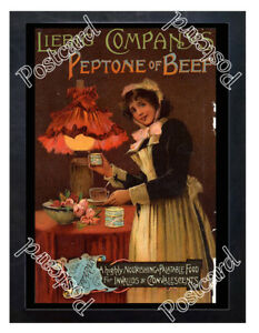 Historic-Liebig-Company-039-s-Peptone-of-Beef-c-1890-Advertising-Postcard
