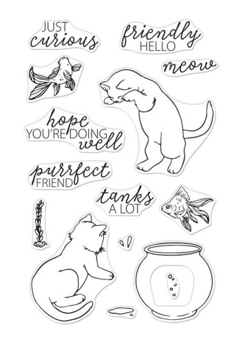 """Hero Arts /""""CURIOUS CAT/"""" Clear Stamps Only or Stamp /& Frame Cuts Dies Bundle"""