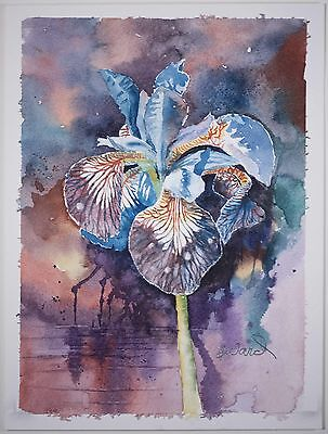 Beautiful Contemporary Floral Watercolor Fabulous Colors Signed G Ward