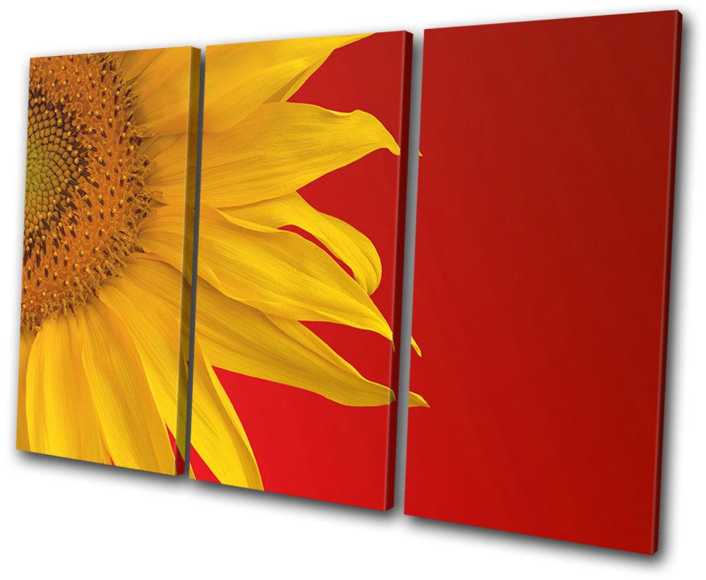 Sunflower Floral TREBLE TELA TELA TELA parete arte foto stampa f6242a