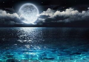 Image is loading Beautiful-Ocean-View-With-the-Moon-Resting-Above-