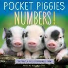 Pocket Piggies Numbers!: Featuring the Teacup Pigs of Pennywell Farm by Richard Austin (Board book, 2014)