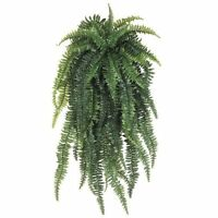 Allstate Floral Weeping Boston Fern Hanging Bush, 52-inch, Light Green, New, Fre on sale