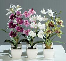 6 schöne Orchideen mit Keramiktopf Kunstblumen Orchidee Blumen Topfblumen NEU