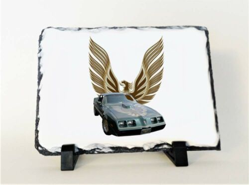 /& coming soon NEW 1979 Pontiac Trans AM Photo Slate! Many different available