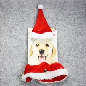 Pet Dog Cat Christmas Outfit Hat & Collar with Bell Set Elastic Pet ...