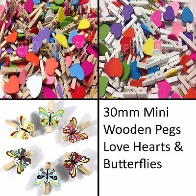 25mm Small Wooden Craft Pegs Choice of Colours Wedding Decor