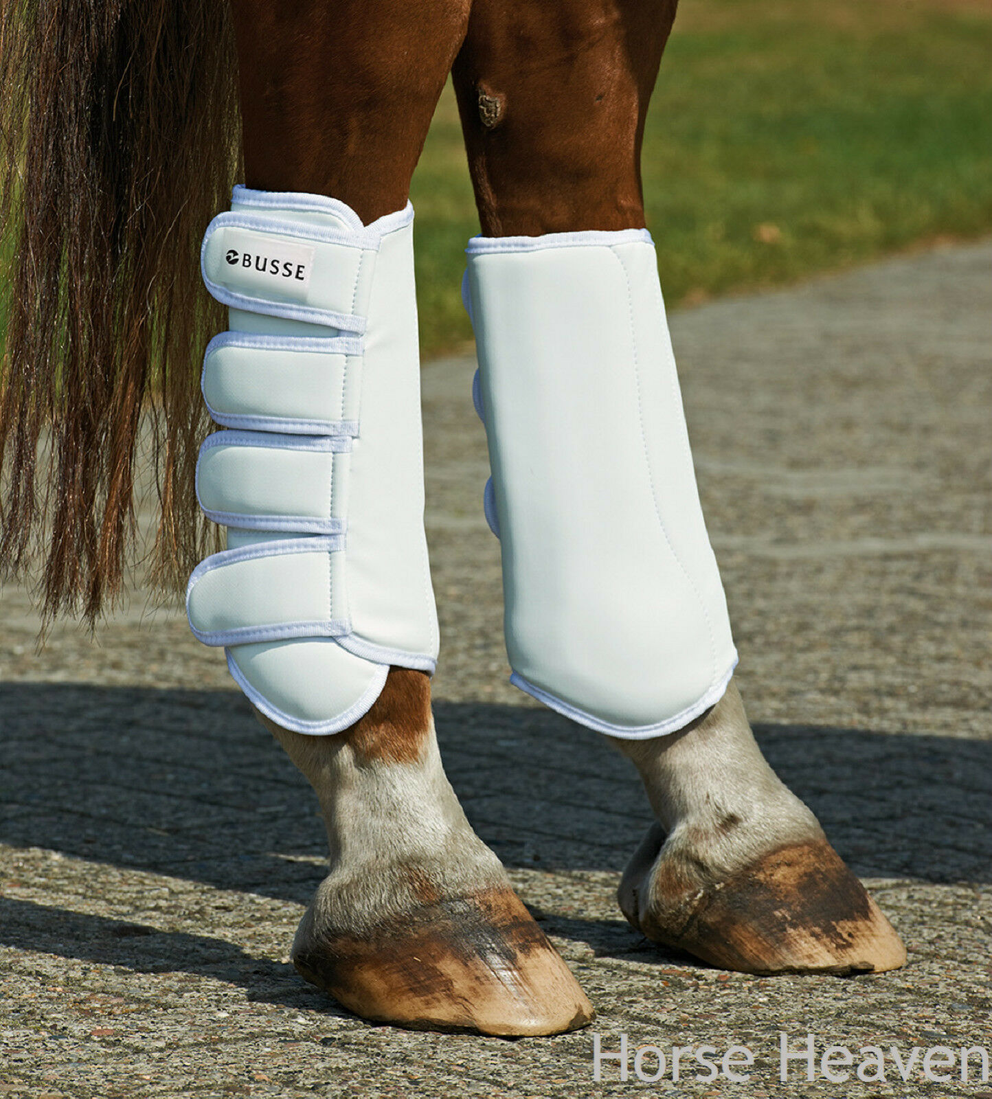 Busse Grand Prix Dressage Boots Advanced Predection with Integral Tendon Guard