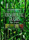 Plantfinder's Guide to Ornamental Grasses by Roger Grounds (Hardback, 1998)