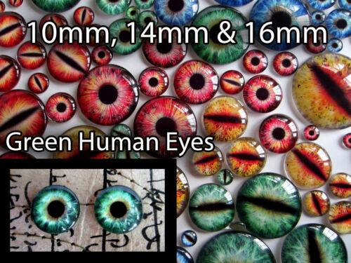 16 mm Taxidermie Verre Dragon Teddy Yeux Human VERT 10 mm 14 mm poupée