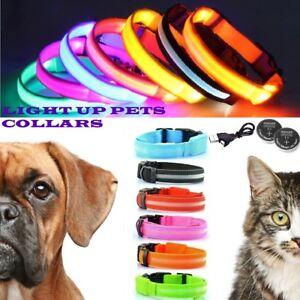 Rechargable LED Dog Cat Pet Collar Neck USB Flash Luminous Night Safety Belt UK