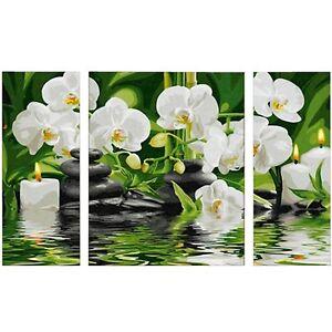 Wellness Oase 50x80 Malen nach Zahlen Schipper 609260681 Orchideen günstig kaufen Malen nach Zahlen für Kinder