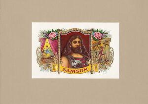 Luxus-Farblithographie-Goldpraegedruck-034-SAMSON-034-Mustervorlage-in-TOP-Erhaltung