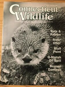 Connecticut-Wildlife-Nov-Dec-1995-Bats-And-Rabies-River-Otter-Bluff-Point