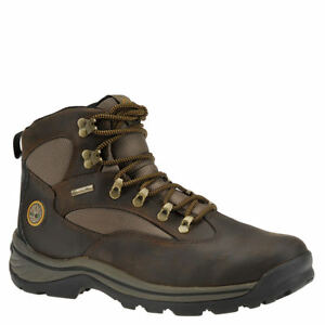 Timberland Men's Chocorua Trail Gore Tex Mid Hiking Boot (11