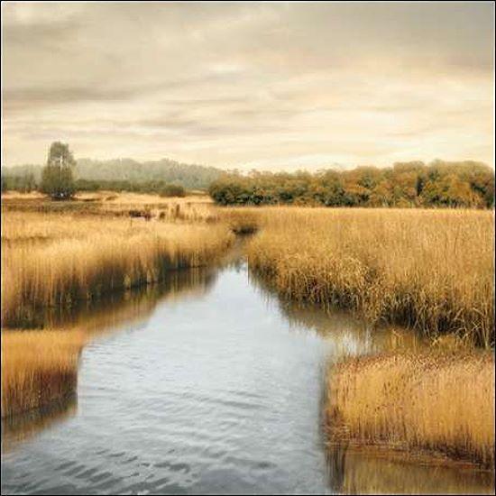John Seba  Morning Calm I Keilrahmen-Bild Leinwand Fluss Felder Weite