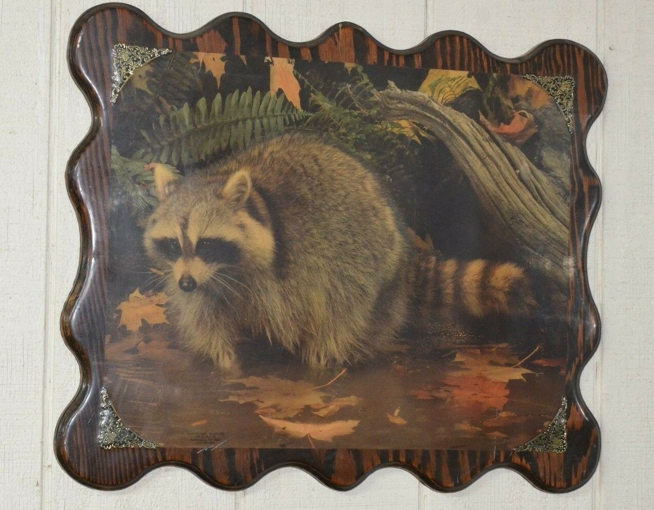 Vintage Raccoon Nature Picture Wood Plaque Rustic Decor Cabin Hunting Lodge Wall
