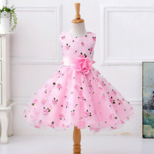 Children-039-s-Girls-Princess-Dress-Flower-Girl-Wedding-Graduation-Tutu-Dresses-ZG9
