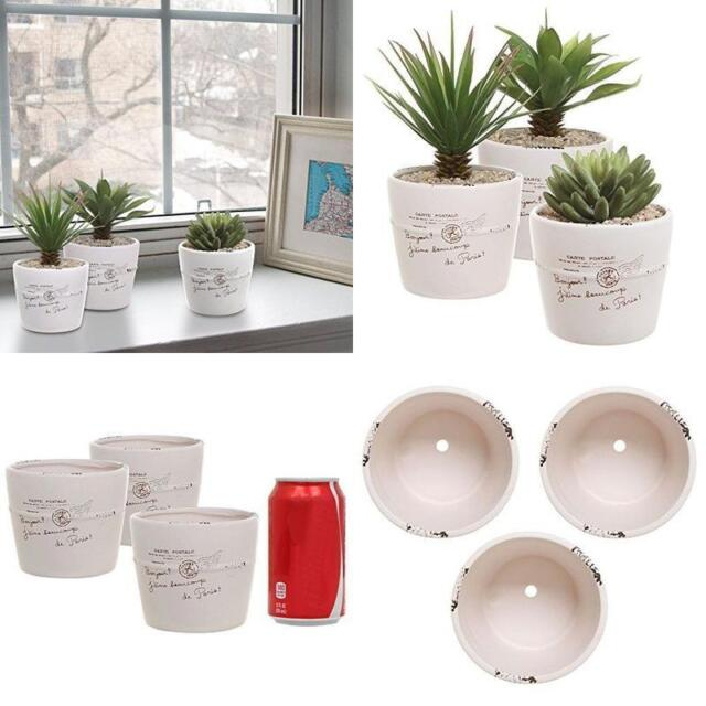 Ceramic Indoor Planter Garden Patio