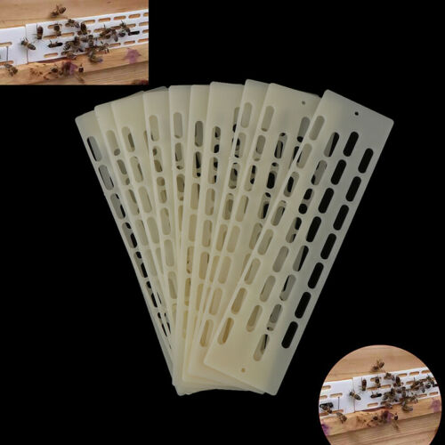 10PCS Beekeeping Tools Anti Escape Queen King Sheet Pieces Bees Spacer