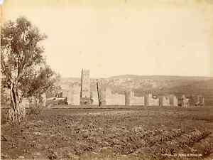 Algerie-Tlemcen-les-ruines-de-Mansourah-Vintage-albumen-print-Tirage-albumin