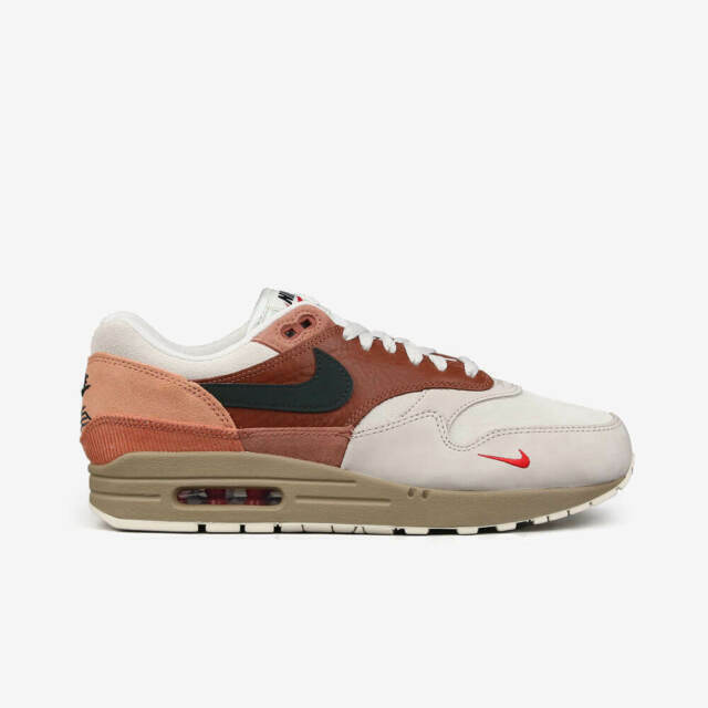 Size 11 - Nike Air Max 1 City Pack Amsterdam 2020 for sale online ...