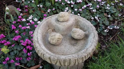 CIOTOLA PIATTO Ornamentale STONE GARDEN Abbeveratoio Uccelli log design uccello Mangiatoia