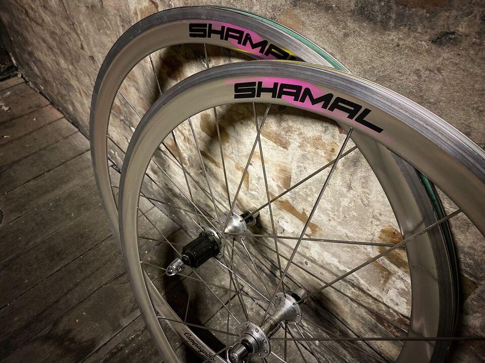 Hjul, Campagnolo Shamal