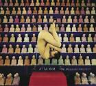 Atta Kim: The Museum Project by Aperture (Hardback, 2005)