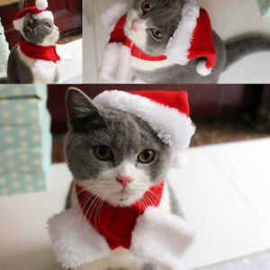 2-PIECE-PLUSH-PET-CAT-DOG-SANTA-HAT-amp-SCARF-CHRISTMAS-HOLIDAY-COSTUME-APPAREL