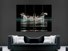 SWIMMING POOL SPORT WATER  ART IMAGE HUGE  LARGE PICTURE POSTER GIANT