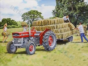3 For 2 Offer - Massey Ferguson 135 Tractor Advertising a3 Poster