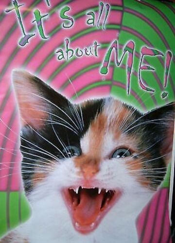 ANIMALIA POSTER~Cat It/'s All About Me Meowing At Camera Hippie Print Scary Look~