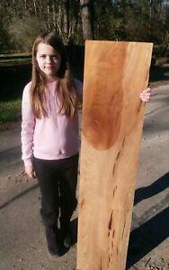 6-Years-Selling-Cypress-on-eBay-BURL-Pecky-Sinker-Cypress-Slab-THIN-1-4-034-Thick