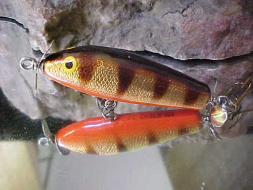 """AC Shiner 2/"""" Cedar Wood 1//4oz Topwater 203 PERCH ORANG BELLY to Fly Fish or Cast"""