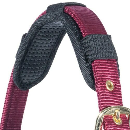 Magnétique Dos nu//Bride Crown-Thérapie Magnétique Bracelet pour votre cheval