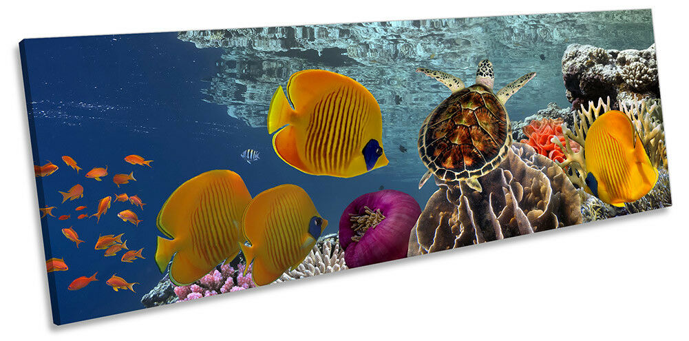 Tropical Fish Coral Marine Framed PANORAMA CANVAS PRINT Wall Art Art Art cd3ac8
