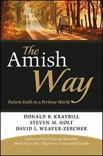 The Amish Way : Patient Faith in a Perilous World by Donald B. Kraybill,...